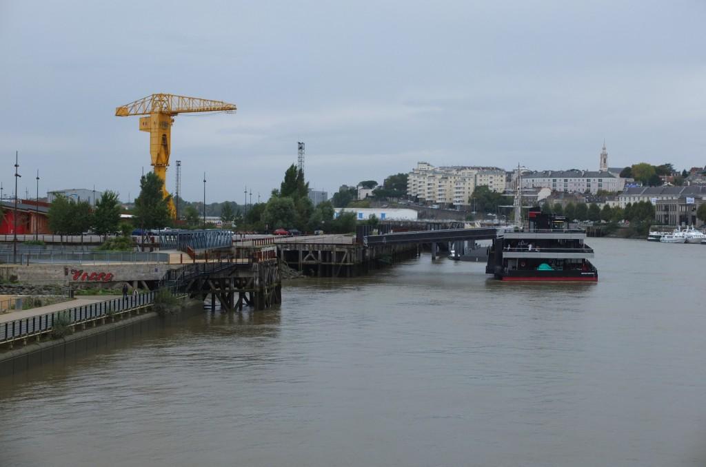 Loire-grue jaune
